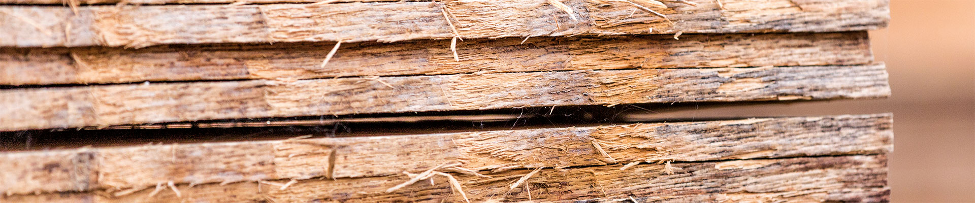 Eiken Boomstammen Te Koop.Eiken Boolhout Carpentier Hardwood Solutions